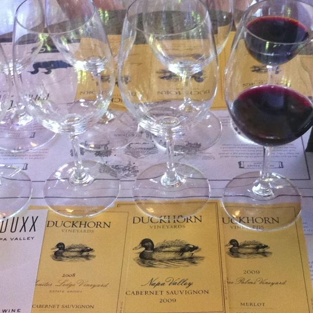 Wine tasting at Duckhorn Vineyards in Napa