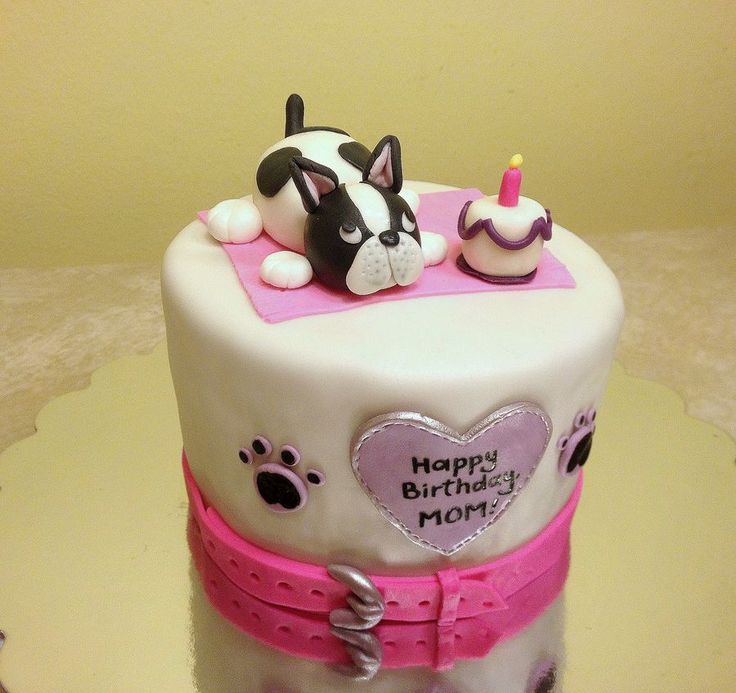 French bulldog cake / dog cake