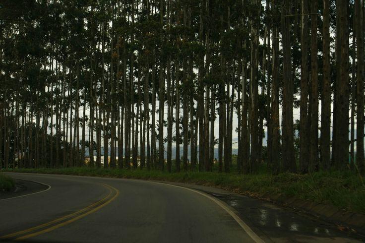 Popayán, La variante. Foto por Gloria Vejarano