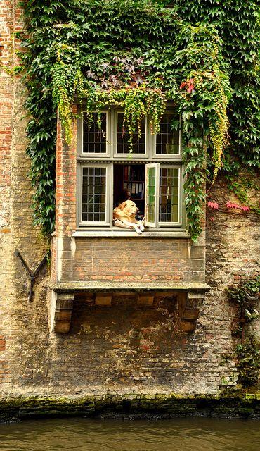 Beautiful Brugge, Belgium - reminds me of my house in NE.