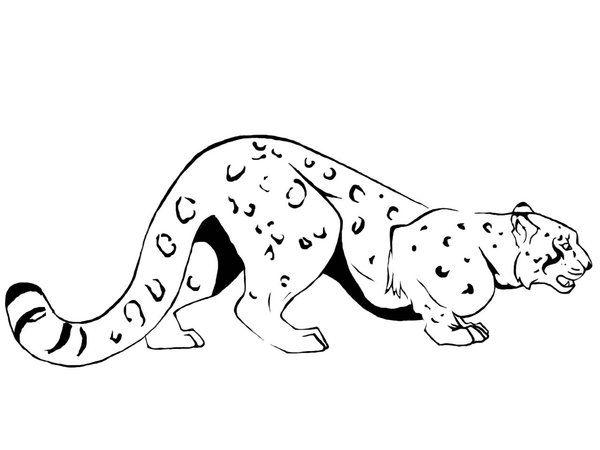 Google Image Result for http://fc02.deviantart.net/fs14/i/2007/045/e/c/Snow_Leopard_Tattoo_by_DarkMoon17.jpg
