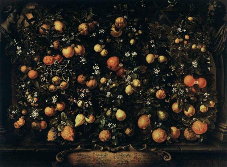 Oranges, Limes, Lemons, and Citrus Lumia — Bartolomeo Bimbi