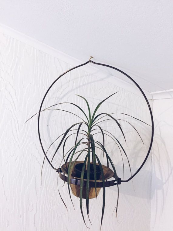 A mid century modern plant hanger. It has a chocolate brown plastic coating over the wire and is more of an oblong shape. As you can see I used a round pot without problem. 18h x 18-1/2w x 6-3/4d. Plant opening is 9l x 6-1/2w The ceramic pot has a fluted edge that is 7-3/4 and I