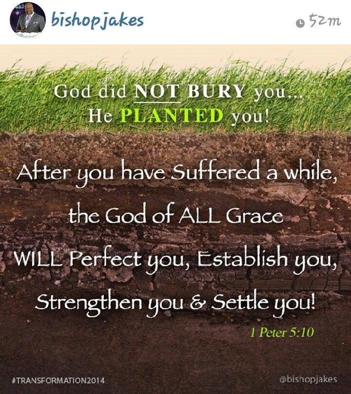 60 Best Affirmations Quotes Images On Pinterest Inspiration Interesting Td Jakes Pain Full Quotes