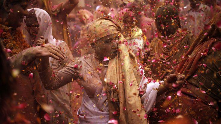 - Viúvas hindus dançam entre flores e tintas durante as celebrações de Holi, no templo Gopinath, na Índia. Há alguns anos, esta celebração tinha sido proibida para as viúvas Hindus. Foto: Anindito Mukherjee / Reuters