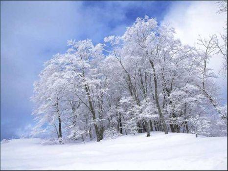 Szép téli képek. versek - cuppanosnagypuszi.lapunk.hu