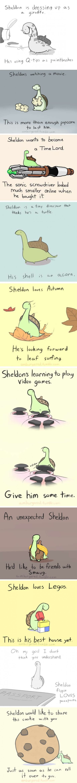 Sheldon The Tiny Dinosaur! You gotta love he is so cute