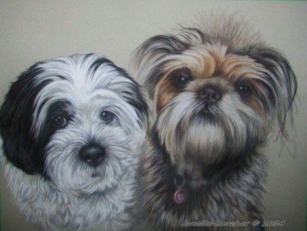 Scamp and Rocco ~ 11x14 Derwent Pastel on velour