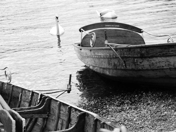 #boat #lake #swan #blackandwhite