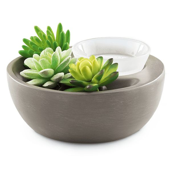 Little Garden Scentsy Warmer $40.  Succulent Garden Scentsy.  A meditative merging of cool grays and clean contours elevates this DIY warmer to artistic heights. Little Garden also includes three faux succulents and one bag of black stones, and can even be used with one of our Decorative Scenes. Or you can get creative and make your own exhibit using figurines, faux flora, rocks and more!
