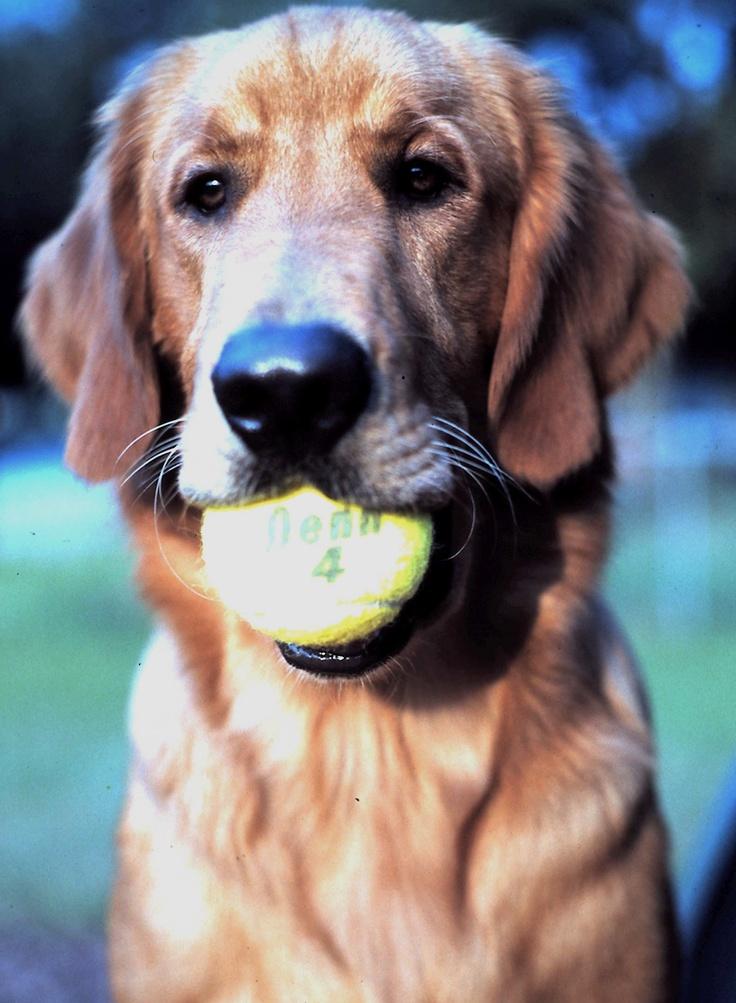 Tennis Merlyn style.