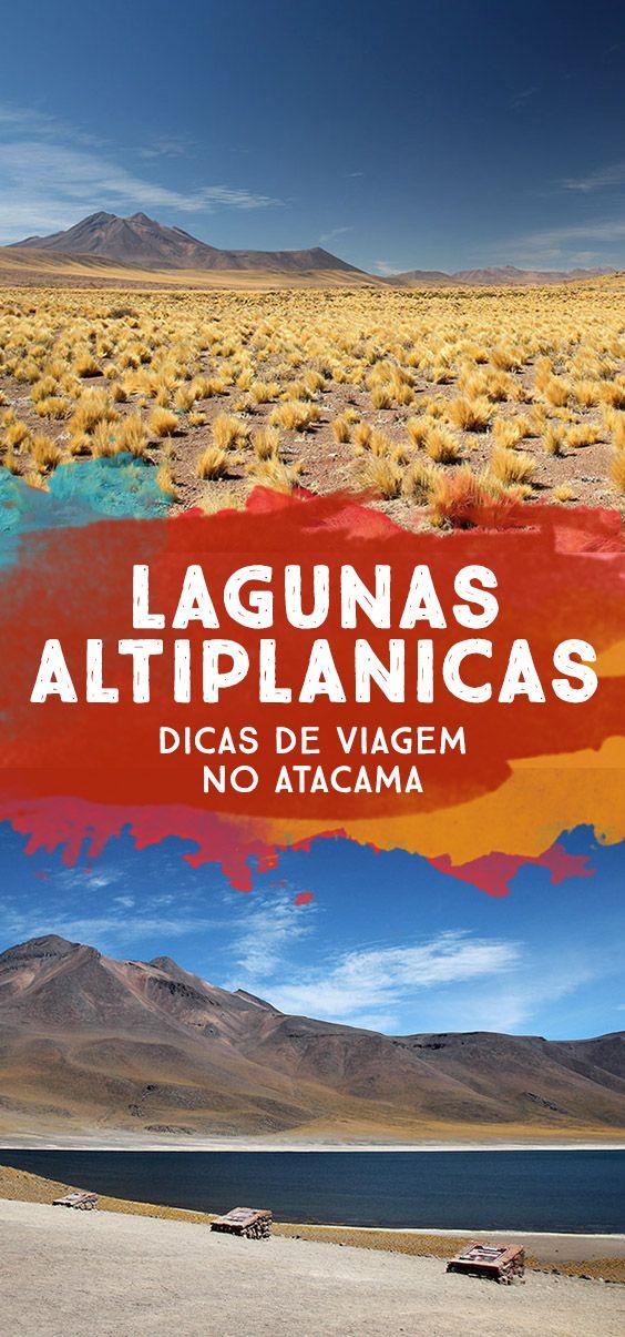 Veja Lagunas Altiplânicas Miñiques e Miscanti, um dos passeios mais lindos do Atacama! 4h no deserto do Atacama tomando sol direto na cabeça!