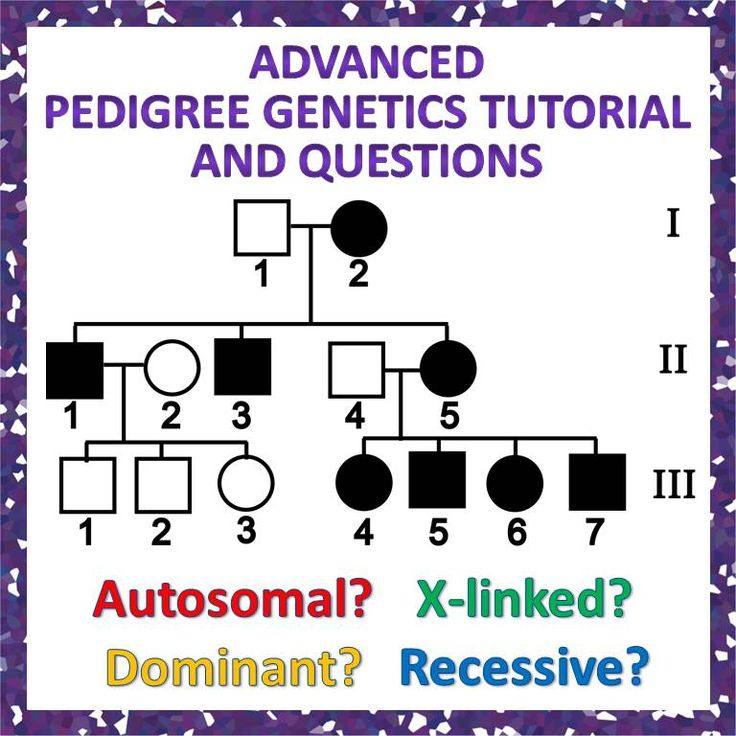 Advanced Pedigree Genetics Tutorial and Question Packet: great for teaching more than just autosomal recessive examples. For Grades 9-12, Honors or AP Biology
