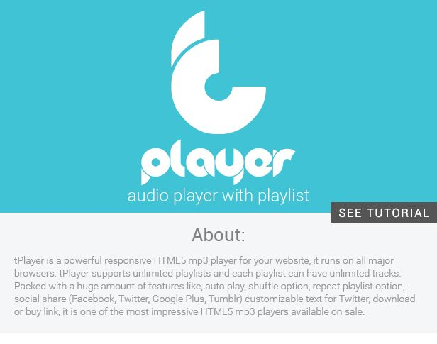tPlayer - audio player (with playlist) for WP - WordPress | CodeCanyon