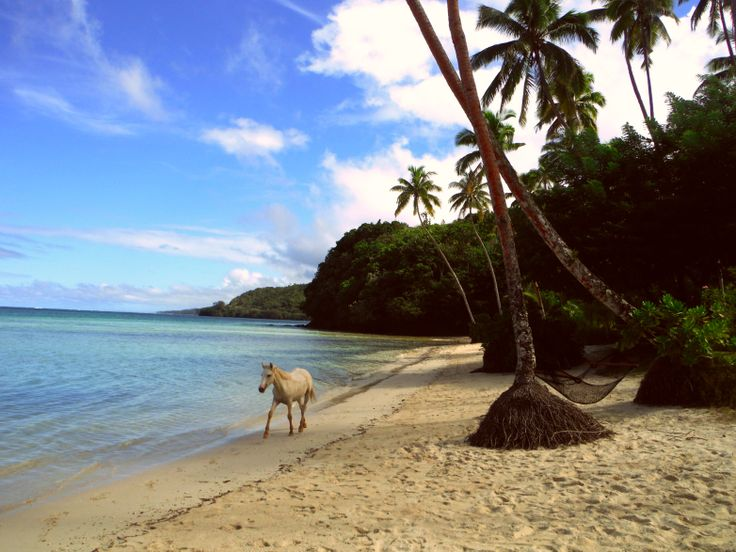 Mango Bay Resort - Fiji
