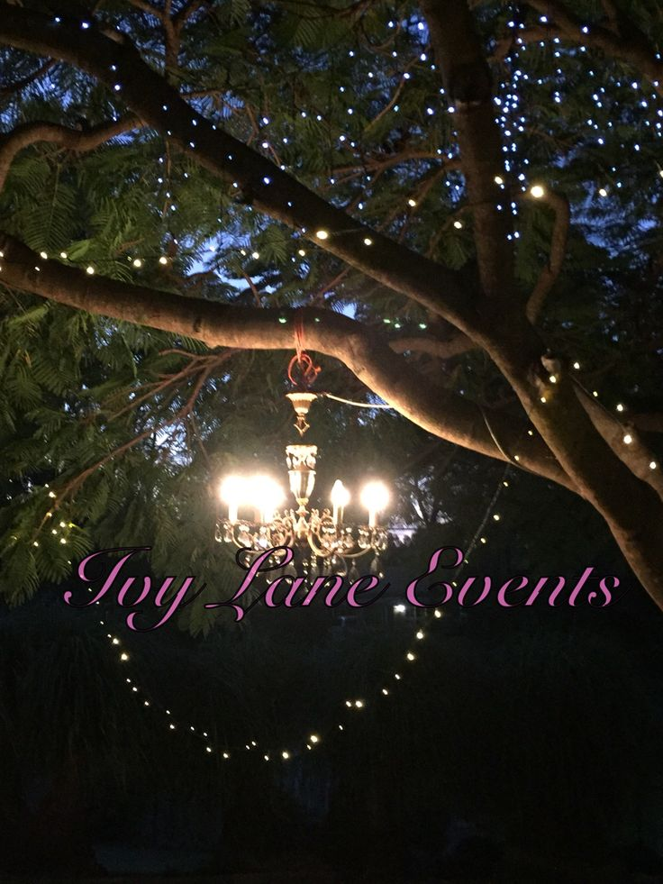 A Romantic night or dinner with a small group, engagement Party, Christmas party. Fairy lights. Chandelier in the trees, stars, Boho Dinner Party, beautiful night for it. Ivy Lane Events. Gold Coast event company.