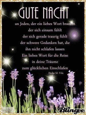 Eine gute Nacht wünsche ich Euch allen meine Lieben