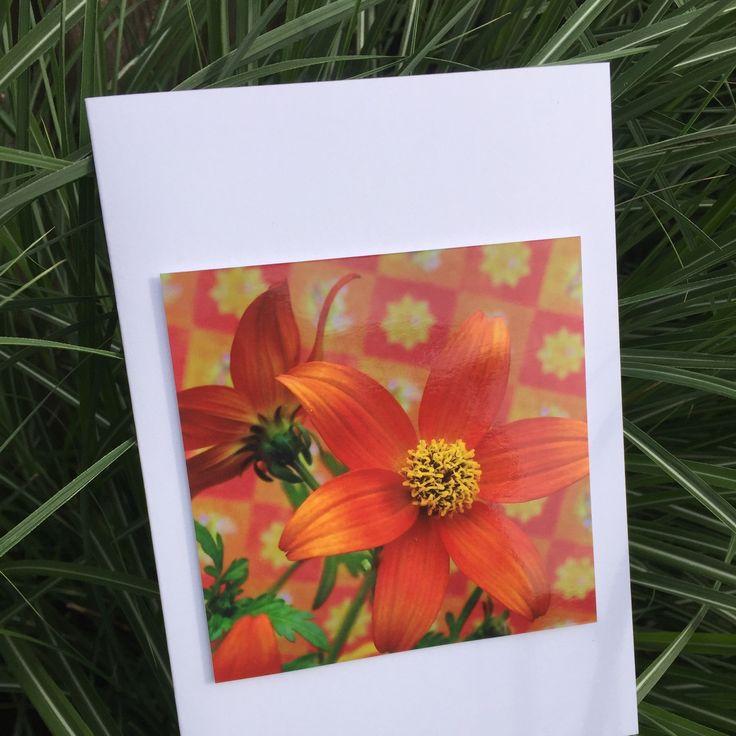 Vrolijk, fleurig, feestelijk, bloemen. Van deze wenskaart word je blij!