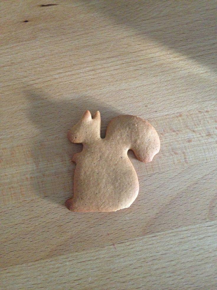 Squirrel cookie! Play PetRescueSaga now >