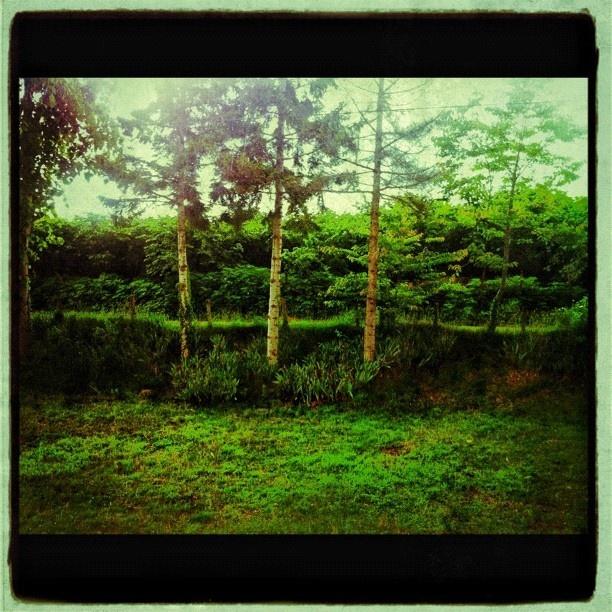 Image created with #Snapseed deneysel :))