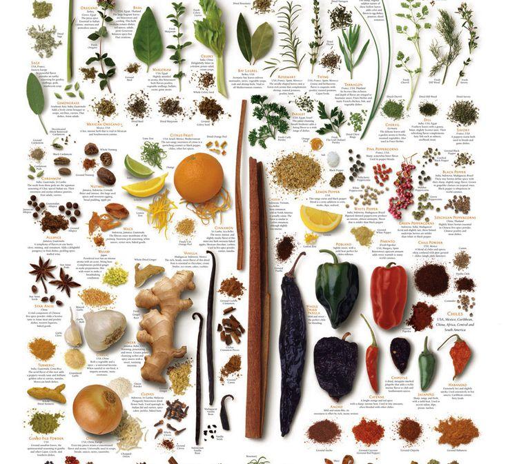 Специи и пряности — базовые правила сочетания