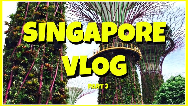Travel Blog Singapore Part 3 ll Places to visit ll Marina Bay ll Gardens ll Smalltowngirl - WATCH VIDEO HERE -> http://singaporeonlinetop.info/travel/travel-blog-singapore-part-3-ll-places-to-visit-ll-marina-bay-ll-gardens-ll-smalltowngirl/    My Travels around Singapore city, the tourist spots and fun things to do in Singapore! Marina Bay Sands Garden by the bay Singapore flyer Singapore Skyline Merlion Tourist spots Rhapsody Show Laser show Marina bay shopping center Itali