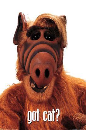 Got cat? Quels bons souvenirs ce Alf! On écoutait ça en famille.