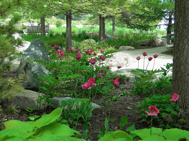 Music Garden - Prelude