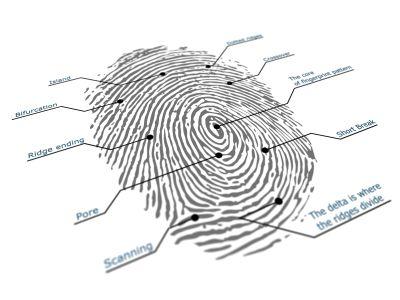 Precise Biometrics Permanently Appoints CFO