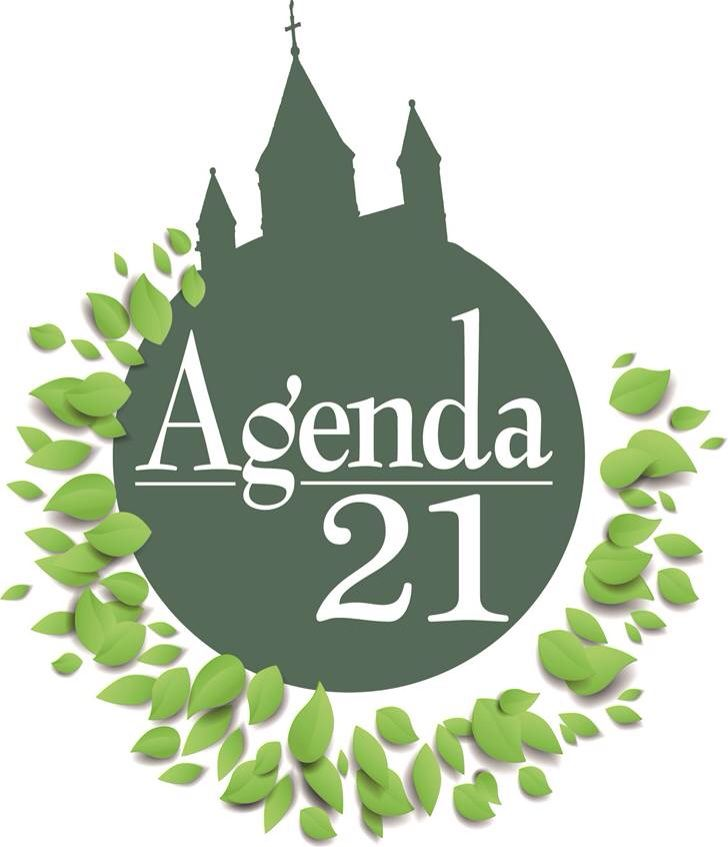 How much do you know and understand about the UN's Agenda 21
