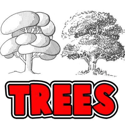 How to Draw Trees, Bark, Twigs, Leaves and Foliage Drawing Tutorial « How to Draw Step by Step Drawing Tutorials