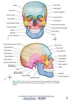 Cirugía Bucal y Maxilofacial  #InstrumentacionQuirurgica #CirugiaOralyMaxilofacial #Medicina #LibreriaAZMedica