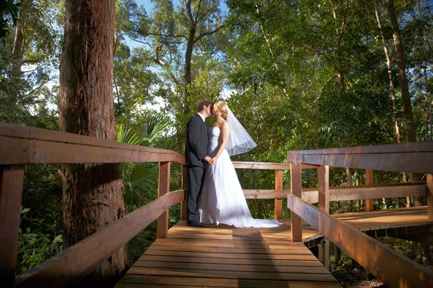 Queensland Brides: Rainforest locations in QLD perfect for weddings