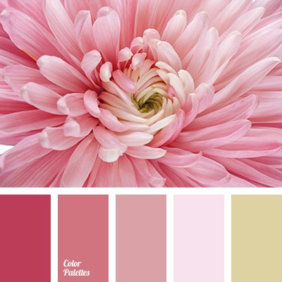 25 best ideas about dusty rose color on pinterest blush bridesmaid dress colours spring. Black Bedroom Furniture Sets. Home Design Ideas