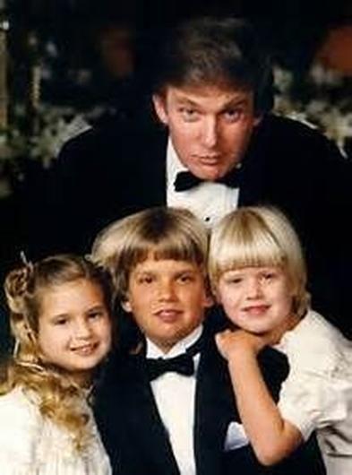 The Trump Family Tree Of Gold   Buzztache