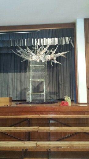 Starting the Magic Baobab Tree