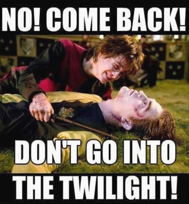 20 Funny Hufflepuff Memes In 2020 Harry Potter Quotes Laughing So Hard Hufflepuff Pride
