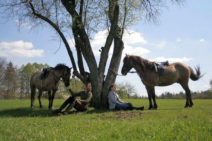 On horseback through Poland | poland.gov.pl
