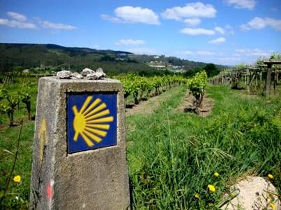 Portuguese way from Porto to Santiago with Portugal Green Walks