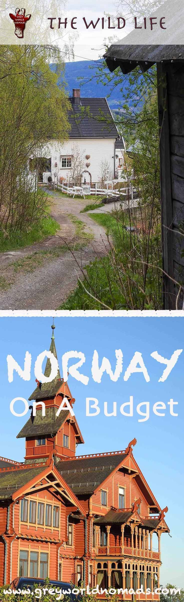 Travel Norway on a budget. Get our firsthand budget travel tips for traveling Norway in a nutshell without breaking the bank. #norway #VisitNorway #norwayonabudget