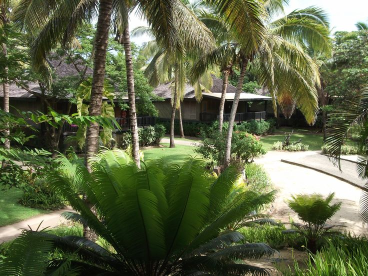 #Travel: Gardens at #Sonaisali Island Resort, #Fiji.  In 1789 Captain William Bligh sailed through the Fii islands after the infamous muting on the Bounty.  Photo Credit: Dawne Rudman