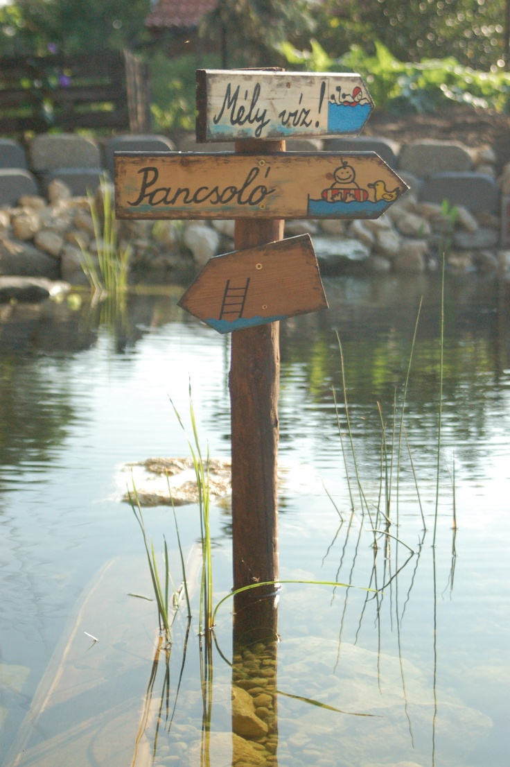 Swimming pond from an old cellar - great recycling idea!