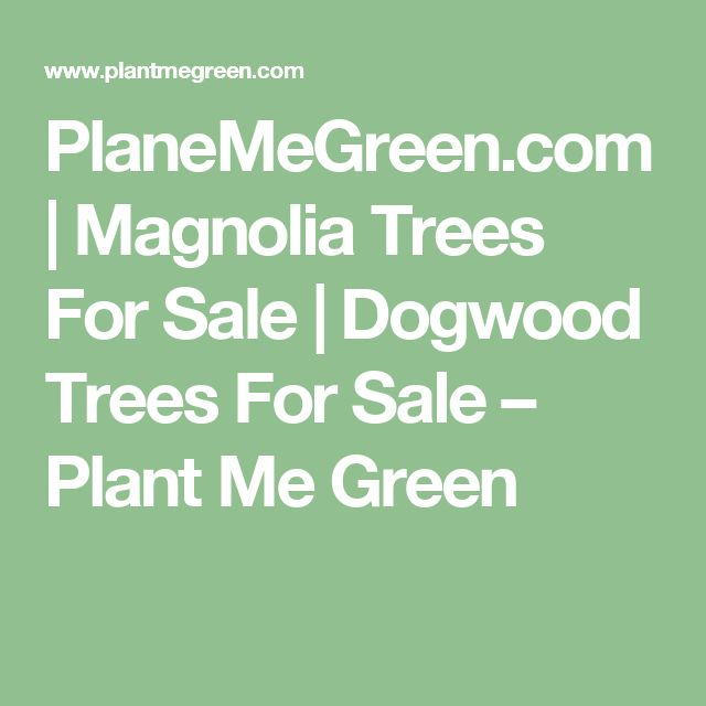 PlaneMeGreen.com | Magnolia Trees For Sale | Dogwood Trees For Sale – Plant Me Green