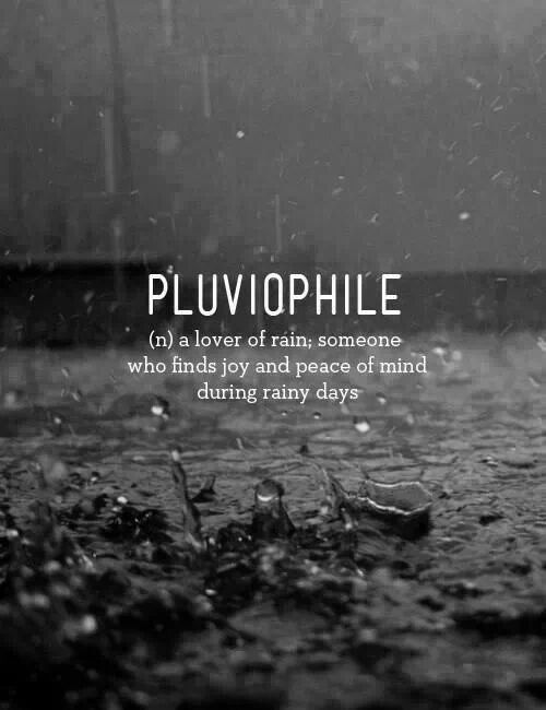 Pluviophile - a lover of rain; someone who finds joy and peace of mind during rainy days.