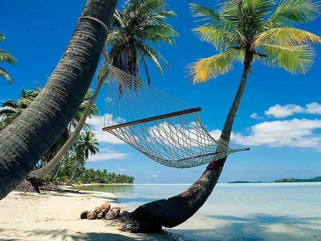 Lahaina: Beaches, Playa Del Carmen, Hammocks, Palms Trees, Naps Time, Paradise, Maui Hawaii, Honeymoons Destinations, Heavens