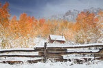 First Snow at the Cabin, by Nate Zeman :)