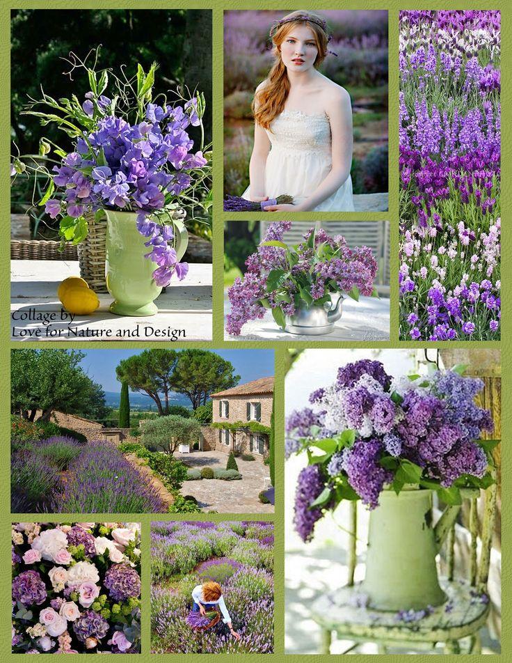 #purple tones