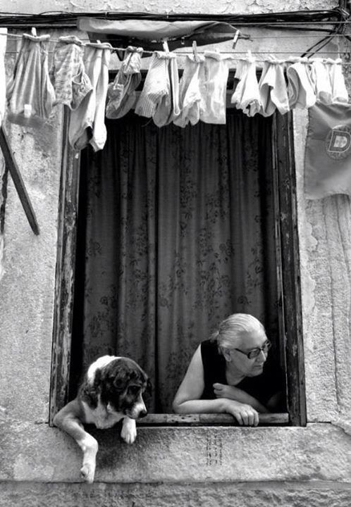 Dog and woman looking out window.