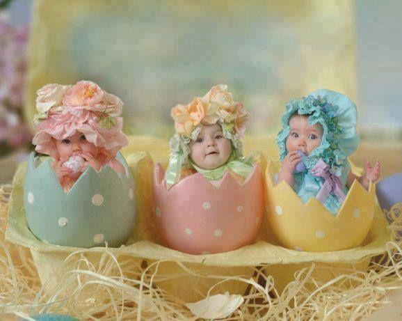 Készültök már a húsvétra? A csibéink már igen!