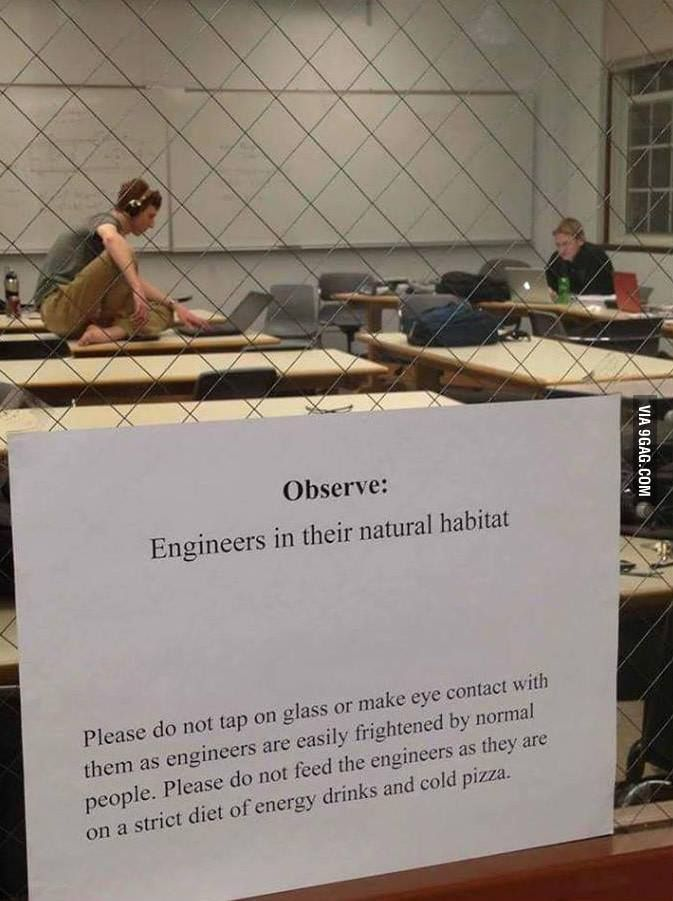 """Engineers in their natural habitat."" I just died. Wut. ..................................."